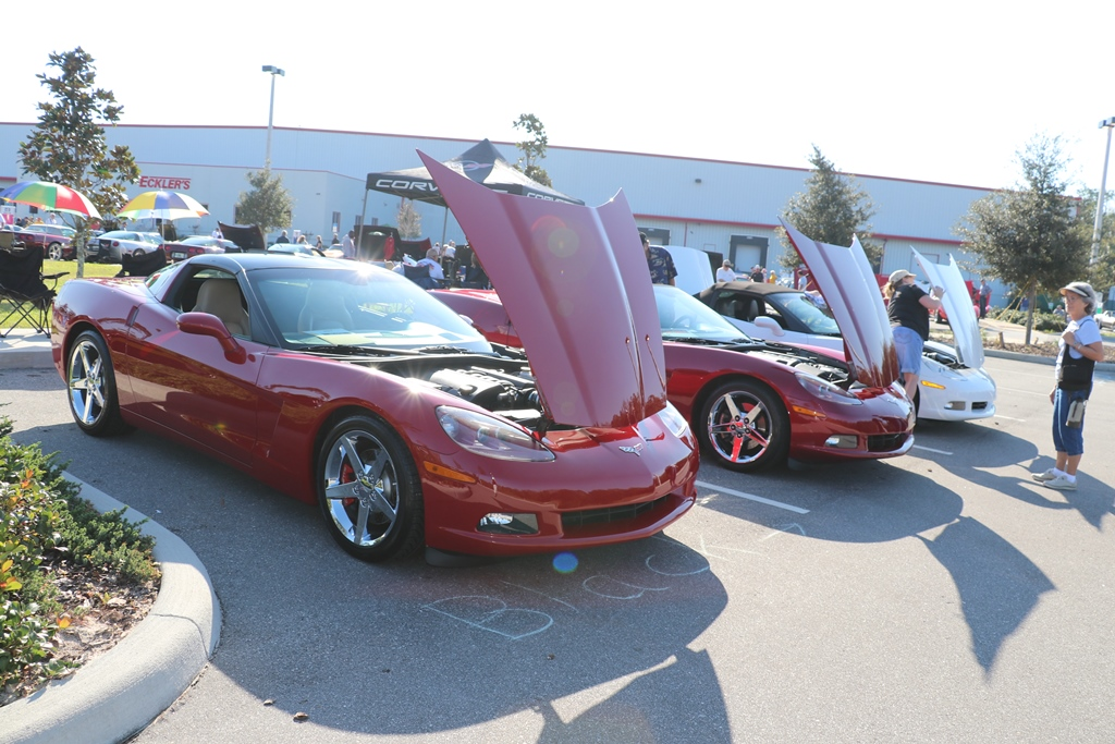 Ecklers 30th corvette reunion 171